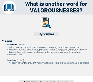 valorousnesses, synonym valorousnesses, another word for valorousnesses, words like valorousnesses, thesaurus valorousnesses