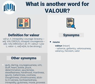 valour, synonym valour, another word for valour, words like valour, thesaurus valour