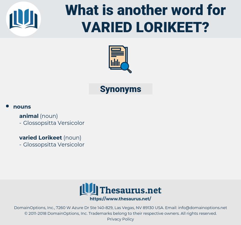 varied lorikeet, synonym varied lorikeet, another word for varied lorikeet, words like varied lorikeet, thesaurus varied lorikeet