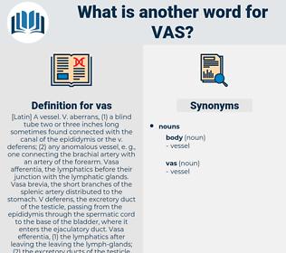 vas, synonym vas, another word for vas, words like vas, thesaurus vas