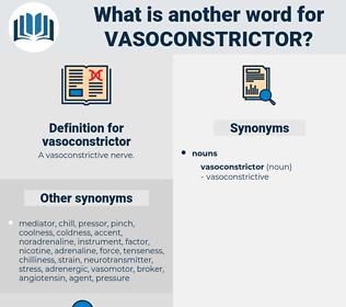 vasoconstrictor, synonym vasoconstrictor, another word for vasoconstrictor, words like vasoconstrictor, thesaurus vasoconstrictor