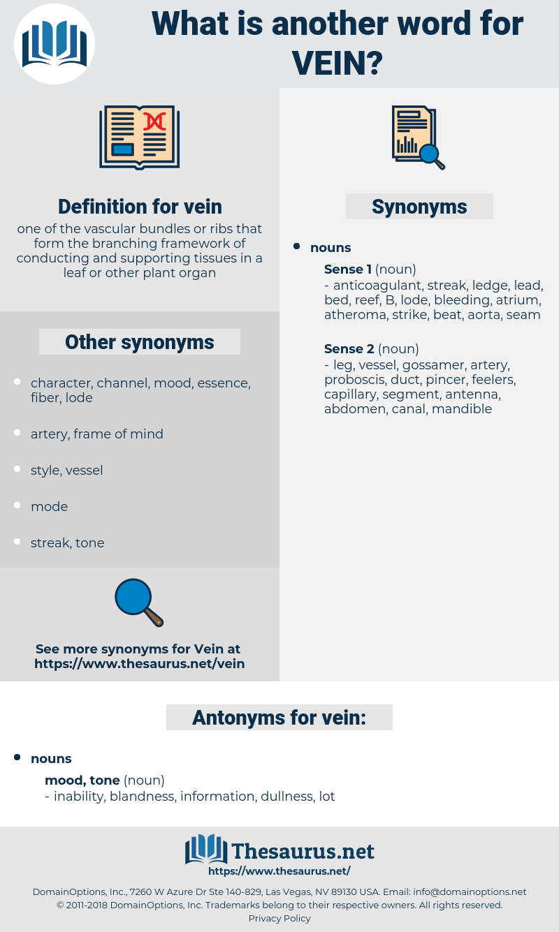 vein, synonym vein, another word for vein, words like vein, thesaurus vein