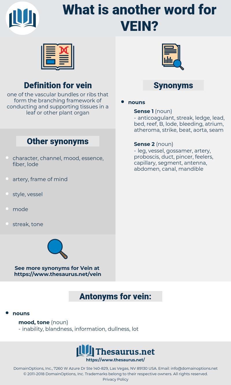 vein, synonym vein, another word for vein, words like vein, thesaurus vein
