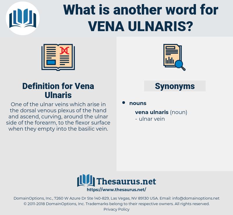Vena Ulnaris, synonym Vena Ulnaris, another word for Vena Ulnaris, words like Vena Ulnaris, thesaurus Vena Ulnaris