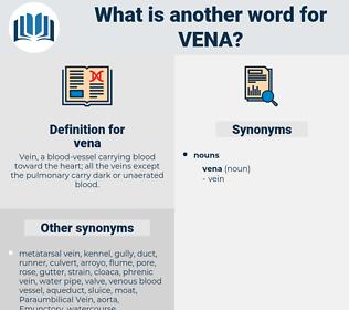 vena, synonym vena, another word for vena, words like vena, thesaurus vena