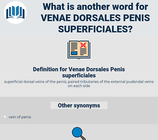 Venae Dorsales Penis superficiales, synonym Venae Dorsales Penis superficiales, another word for Venae Dorsales Penis superficiales, words like Venae Dorsales Penis superficiales, thesaurus Venae Dorsales Penis superficiales