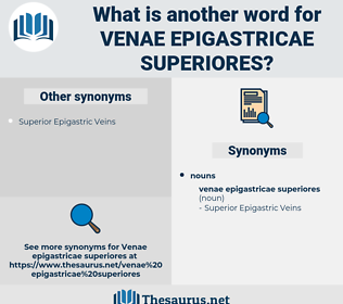 Venae Epigastricae Superiores, synonym Venae Epigastricae Superiores, another word for Venae Epigastricae Superiores, words like Venae Epigastricae Superiores, thesaurus Venae Epigastricae Superiores