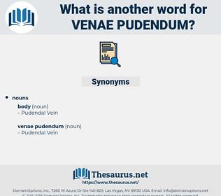 venae pudendum, synonym venae pudendum, another word for venae pudendum, words like venae pudendum, thesaurus venae pudendum