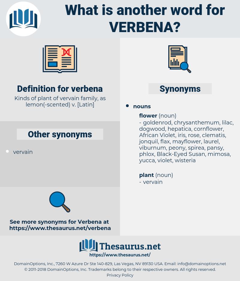 verbena, synonym verbena, another word for verbena, words like verbena, thesaurus verbena