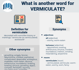 vermiculate, synonym vermiculate, another word for vermiculate, words like vermiculate, thesaurus vermiculate