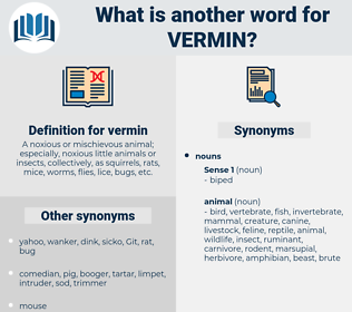 vermin, synonym vermin, another word for vermin, words like vermin, thesaurus vermin