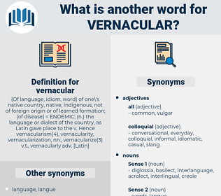 vernacular, synonym vernacular, another word for vernacular, words like vernacular, thesaurus vernacular