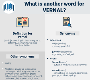 vernal, synonym vernal, another word for vernal, words like vernal, thesaurus vernal