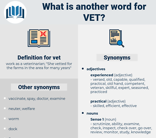 vet, synonym vet, another word for vet, words like vet, thesaurus vet