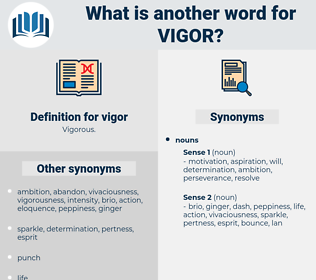 vigor, synonym vigor, another word for vigor, words like vigor, thesaurus vigor