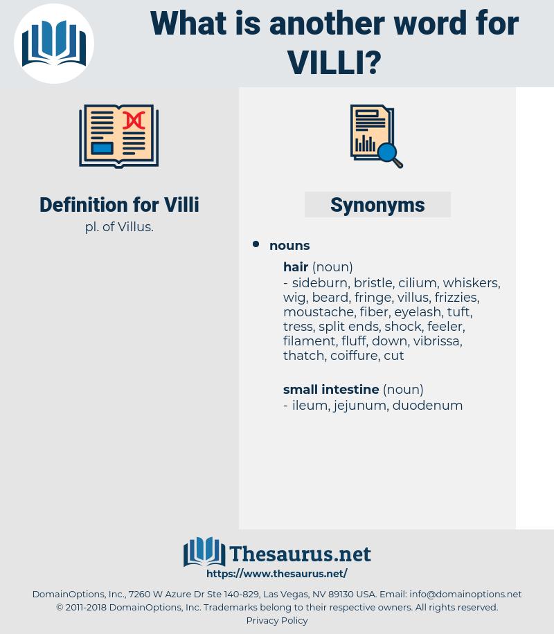 Villi, synonym Villi, another word for Villi, words like Villi, thesaurus Villi