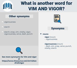 vim and vigor, synonym vim and vigor, another word for vim and vigor, words like vim and vigor, thesaurus vim and vigor