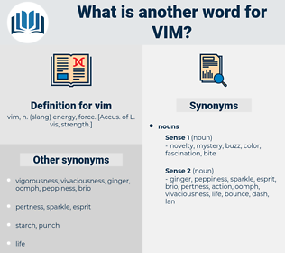vim, synonym vim, another word for vim, words like vim, thesaurus vim