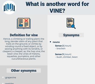 vine, synonym vine, another word for vine, words like vine, thesaurus vine