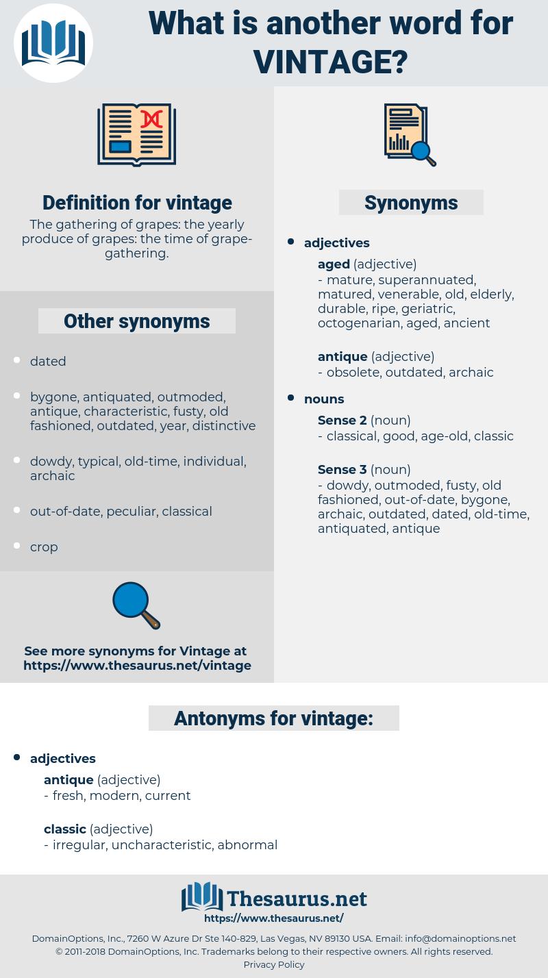 vintage, synonym vintage, another word for vintage, words like vintage, thesaurus vintage