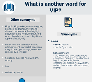 vip, synonym vip, another word for vip, words like vip, thesaurus vip