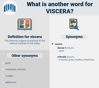 viscera, synonym viscera, another word for viscera, words like viscera, thesaurus viscera
