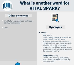 vital spark, synonym vital spark, another word for vital spark, words like vital spark, thesaurus vital spark