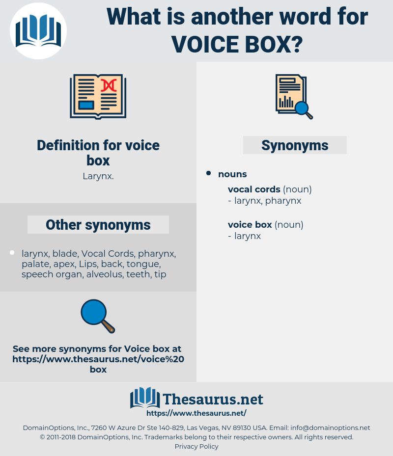 voice box, synonym voice box, another word for voice box, words like voice box, thesaurus voice box