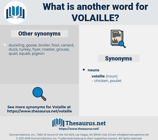 volaille, synonym volaille, another word for volaille, words like volaille, thesaurus volaille