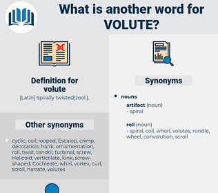 volute, synonym volute, another word for volute, words like volute, thesaurus volute