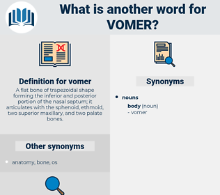 vomer, synonym vomer, another word for vomer, words like vomer, thesaurus vomer