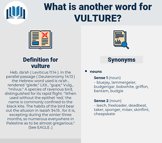 vulture, synonym vulture, another word for vulture, words like vulture, thesaurus vulture