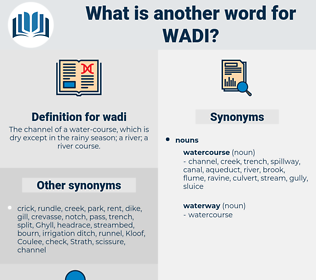 wadi, synonym wadi, another word for wadi, words like wadi, thesaurus wadi