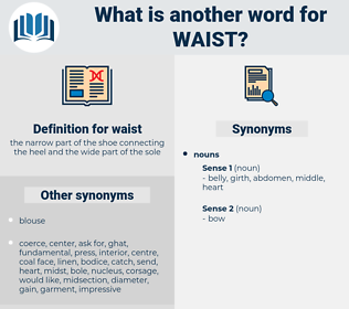 waist, synonym waist, another word for waist, words like waist, thesaurus waist