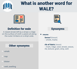 wale, synonym wale, another word for wale, words like wale, thesaurus wale