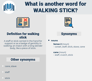 walking stick, synonym walking stick, another word for walking stick, words like walking stick, thesaurus walking stick