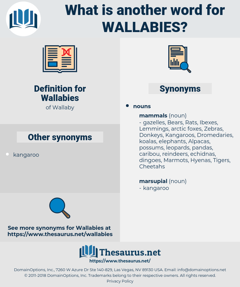 Wallabies, synonym Wallabies, another word for Wallabies, words like Wallabies, thesaurus Wallabies