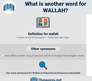 wallah, synonym wallah, another word for wallah, words like wallah, thesaurus wallah