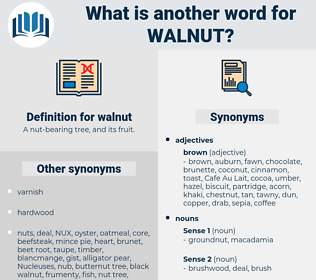 walnut, synonym walnut, another word for walnut, words like walnut, thesaurus walnut