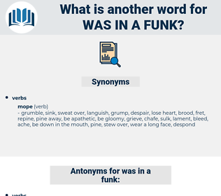 was in a funk, synonym was in a funk, another word for was in a funk, words like was in a funk, thesaurus was in a funk
