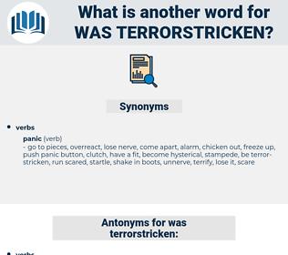 was terrorstricken, synonym was terrorstricken, another word for was terrorstricken, words like was terrorstricken, thesaurus was terrorstricken