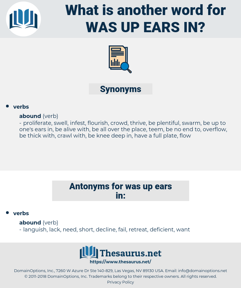 was up ears in, synonym was up ears in, another word for was up ears in, words like was up ears in, thesaurus was up ears in