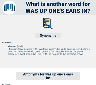 was up one's ears in, synonym was up one's ears in, another word for was up one's ears in, words like was up one's ears in, thesaurus was up one's ears in