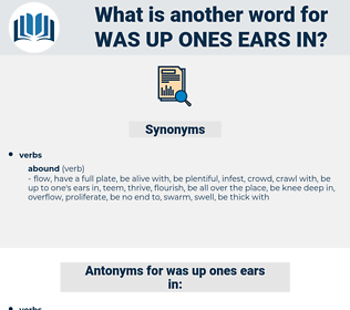 was up ones ears in, synonym was up ones ears in, another word for was up ones ears in, words like was up ones ears in, thesaurus was up ones ears in