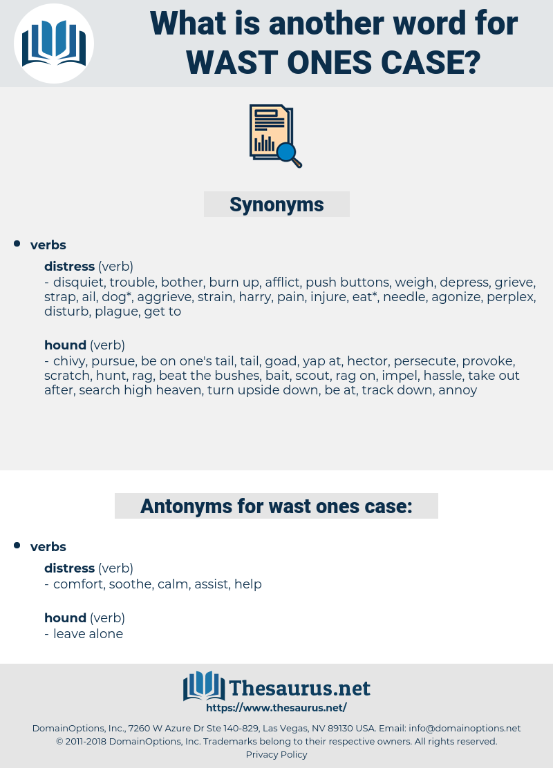 wast ones case, synonym wast ones case, another word for wast ones case, words like wast ones case, thesaurus wast ones case