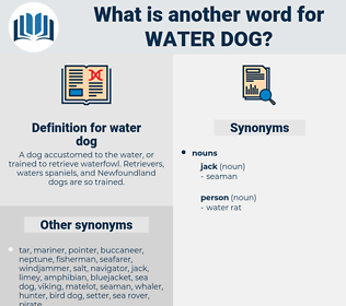 water dog, synonym water dog, another word for water dog, words like water dog, thesaurus water dog