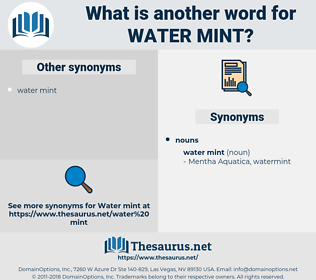 water mint, synonym water mint, another word for water mint, words like water mint, thesaurus water mint