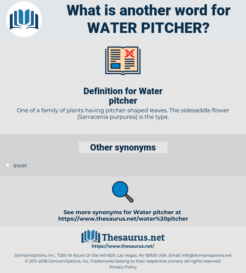 Water pitcher, synonym Water pitcher, another word for Water pitcher, words like Water pitcher, thesaurus Water pitcher