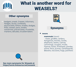 weasels, synonym weasels, another word for weasels, words like weasels, thesaurus weasels