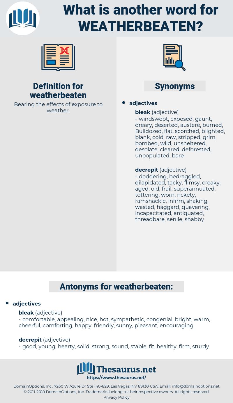 weatherbeaten, synonym weatherbeaten, another word for weatherbeaten, words like weatherbeaten, thesaurus weatherbeaten